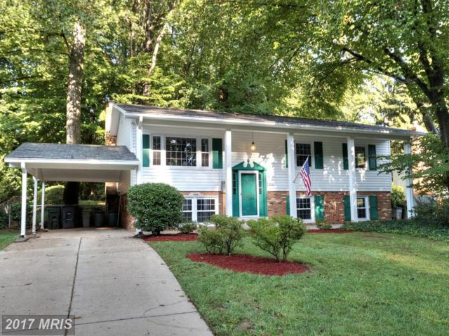 5010 Fleming Drive, Annandale, VA 22003 (#FX10050662) :: Pearson Smith Realty