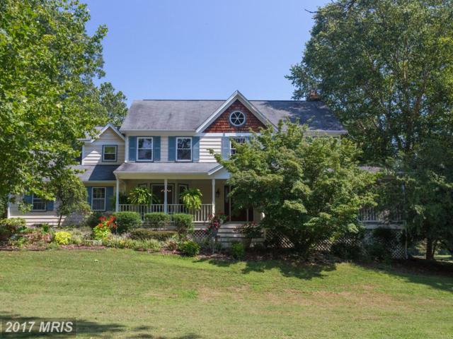 6619 Briarcroft Street, Clifton, VA 20124 (#FX10051026) :: The Dwell Well Group