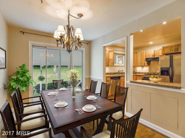 7102 Fort Hunt Road, Alexandria, VA 22307 (#FX10051079) :: Labrador Real Estate Team