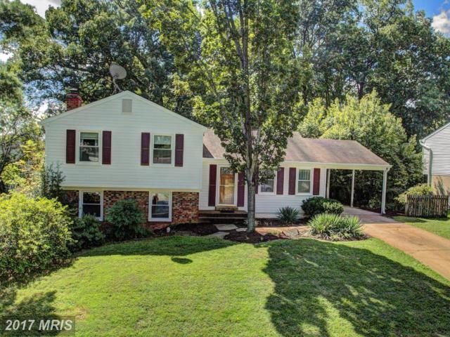 15323 Blueridge View Drive, Centreville, VA 20120 (#FX10051864) :: Pearson Smith Realty
