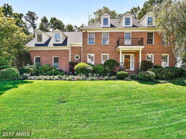 6808 Compton Heights Circle, Clifton, VA 20124 (#FX10054941) :: Pearson Smith Realty