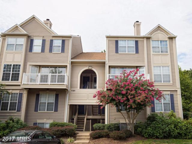 9278-D Cardinal Forest Lane #302, Lorton, VA 22079 (#FX10055436) :: Pearson Smith Realty