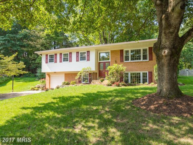 9527 Center Street, Vienna, VA 22181 (#FX10057589) :: Pearson Smith Realty