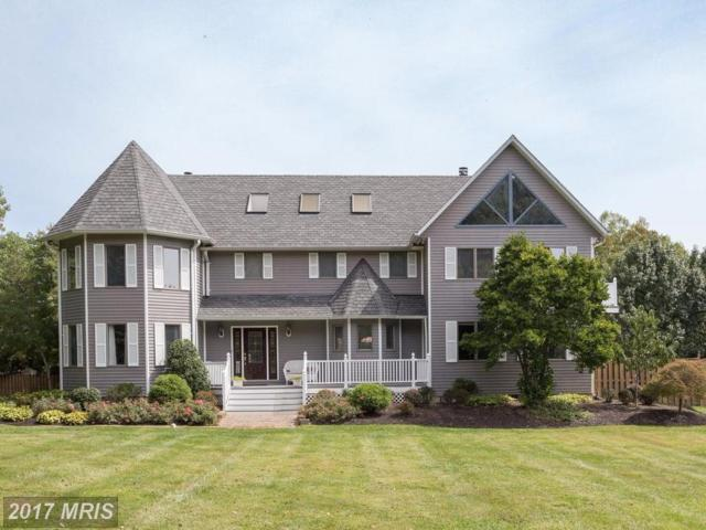 901 Falls Bridge Lane, Great Falls, VA 22066 (#FX10057670) :: Bic DeCaro & Associates