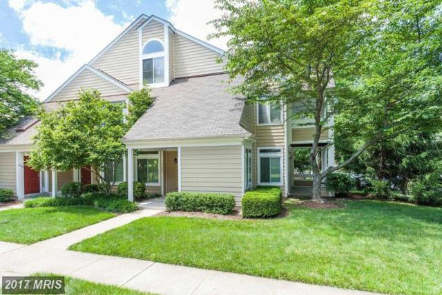 12333 Strong Court #575, Fairfax, VA 22033 (#FX10057881) :: Pearson Smith Realty