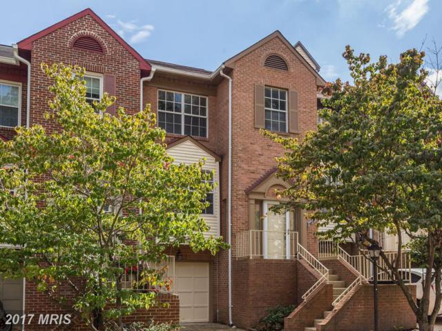 6051 Knights Ridge Way, Alexandria, VA 22310 (#FX10057925) :: Pearson Smith Realty