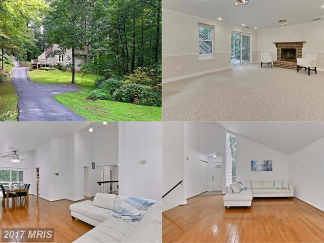12719 Olivia Drive, Fairfax, VA 22030 (#FX10058244) :: Provident Real Estate