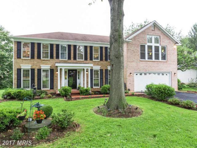 912 Riva Ridge Drive, Great Falls, VA 22066 (#FX10058377) :: Circadian Realty Group