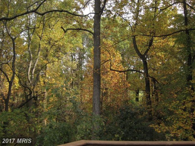 6514 Topeka Road, Mclean, VA 22101 (#FX10059092) :: The Putnam Group