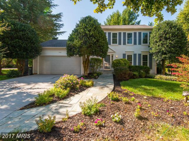 13137 New Parkland Drive, Herndon, VA 20171 (#FX10059166) :: The Putnam Group