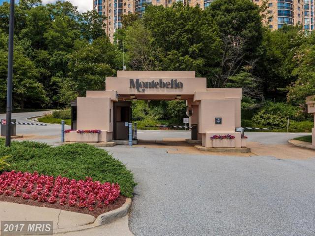 5904 Mount Eagle Drive #1103, Alexandria, VA 22303 (#FX10060763) :: A-K Real Estate