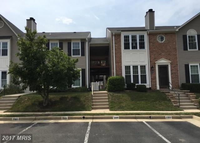 7714-D Lexton Place #96, Springfield, VA 22152 (#FX10060917) :: The Putnam Group