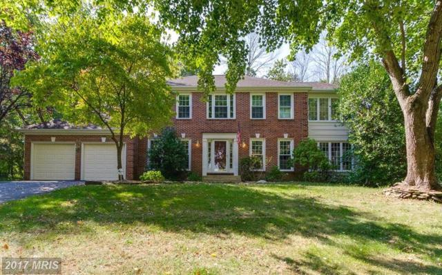 6184 Snowhill Court, Centreville, VA 20120 (#FX10061395) :: Long & Foster