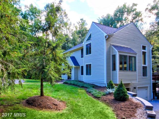 10714 Milkweed Drive, Great Falls, VA 22066 (#FX10061406) :: Provident Real Estate