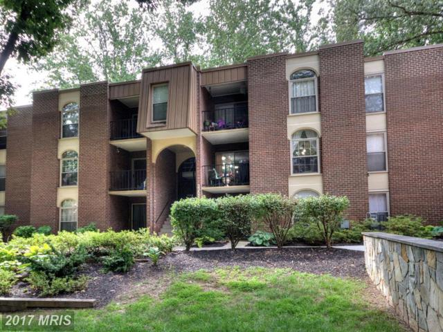 3352 Woodburn Road #13, Annandale, VA 22003 (#FX10061493) :: Mosaic Realty Group