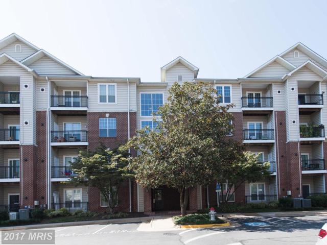 1570 Spring Gate Drive #7204, Mclean, VA 22102 (#FX10062108) :: Bic DeCaro & Associates