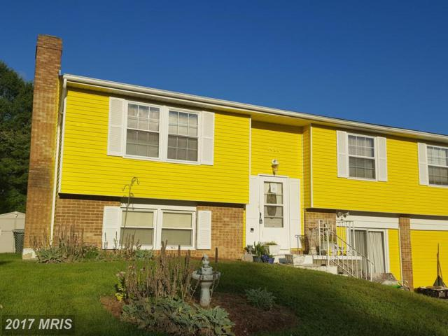 7931 Caledonia Street, Alexandria, VA 22309 (#FX10062453) :: SURE Sales Group