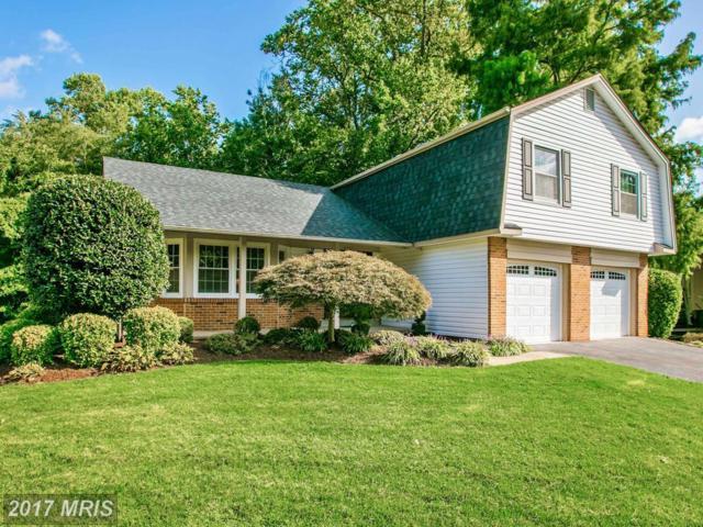 8900 Grass Valley Court, Springfield, VA 22153 (#FX10062534) :: Fine Nest Realty Group