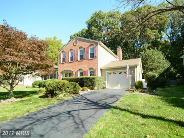 7807 Cliffside Court, Springfield, VA 22153 (#FX10062821) :: Browning Homes Group