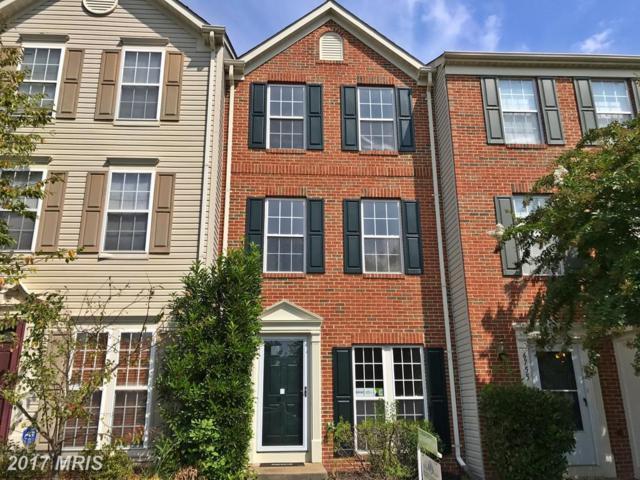 6753 Stone Maple Terrace, Centreville, VA 20121 (#FX10062876) :: Pearson Smith Realty