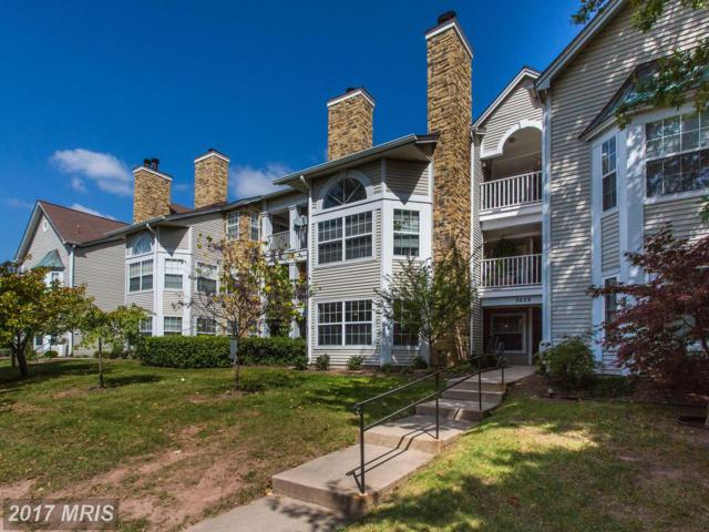 5629 Willoughby Newton Drive #12, Centreville, VA 20120 (#FX10063232) :: Pearson Smith Realty