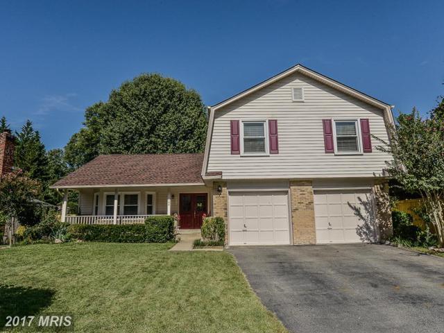 7124 Hamor Lane, Springfield, VA 22153 (#FX10063304) :: Fine Nest Realty Group