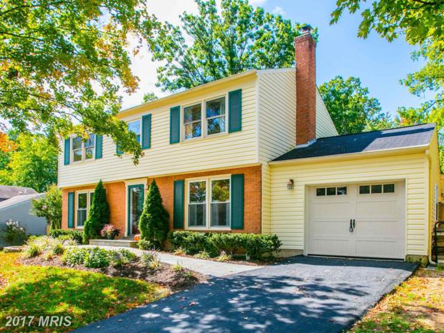 537 Merlins Lane, Herndon, VA 20170 (#FX10063368) :: Circadian Realty Group