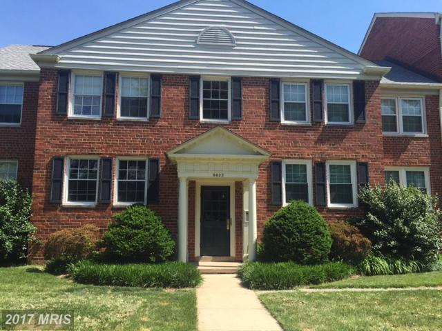 6623 10TH Street A1, Alexandria, VA 22307 (#FX10063724) :: Pearson Smith Realty