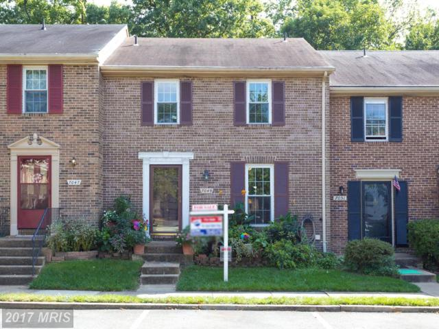 7049 Leewood Forest Drive, Springfield, VA 22151 (#FX10063984) :: The Upham Group | Powered by Five Doors