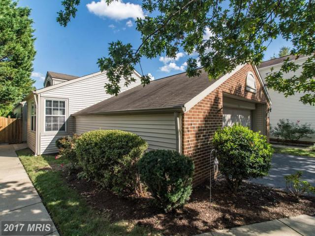 7524 Cross Gate Lane, Alexandria, VA 22315 (#FX10065003) :: The Nemerow Team