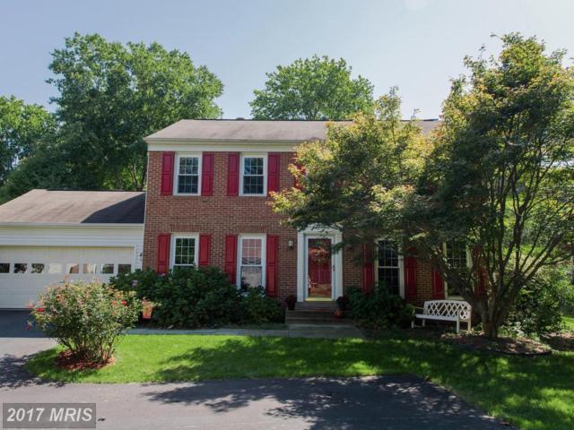 5556 Ann Peake Drive, Fairfax, VA 22032 (#FX10065057) :: Krissy Cruse | Keller Williams Realty