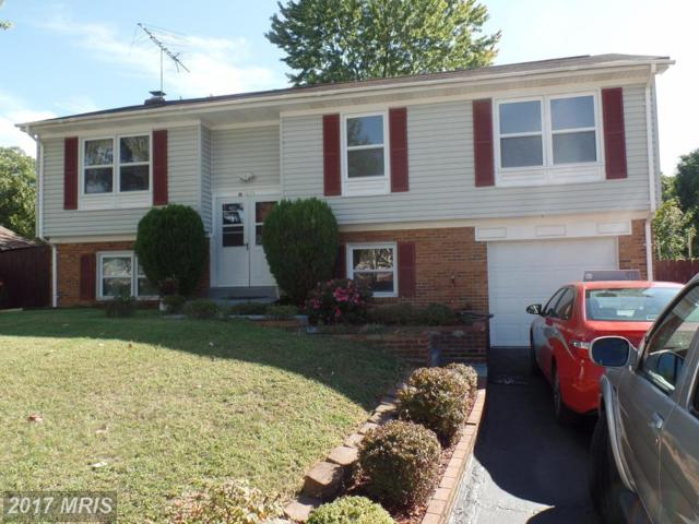 6823 Stringer Court, Springfield, VA 22150 (#FX10065123) :: Pearson Smith Realty