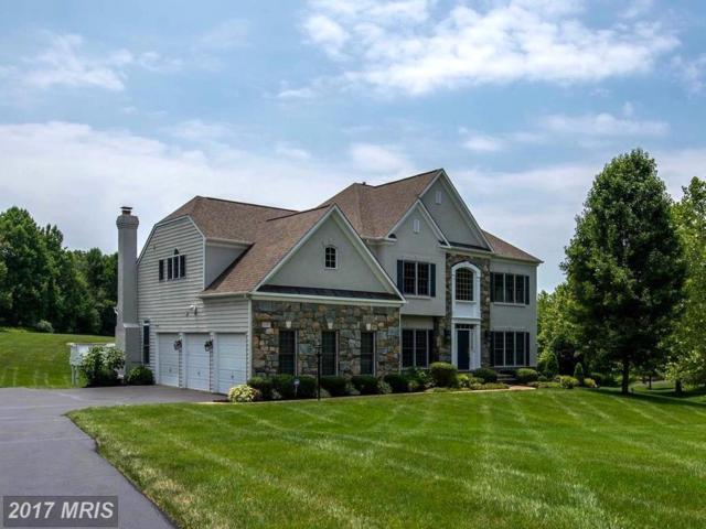 10411 Dunn Meadow Road, Vienna, VA 22182 (#FX10065208) :: Blackwell Real Estate