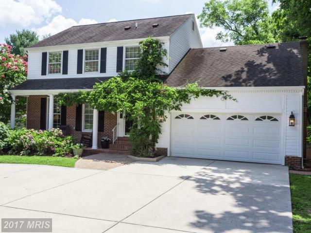 6445 Linway Terrace, Mclean, VA 22101 (#FX10065232) :: Blackwell Real Estate