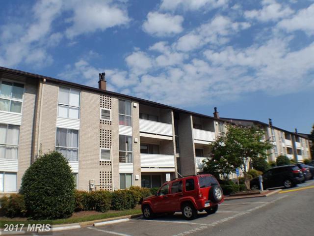 5608 Bismach Drive #204, Alexandria, VA 22312 (#FX10066114) :: Keller Williams Pat Hiban Real Estate Group