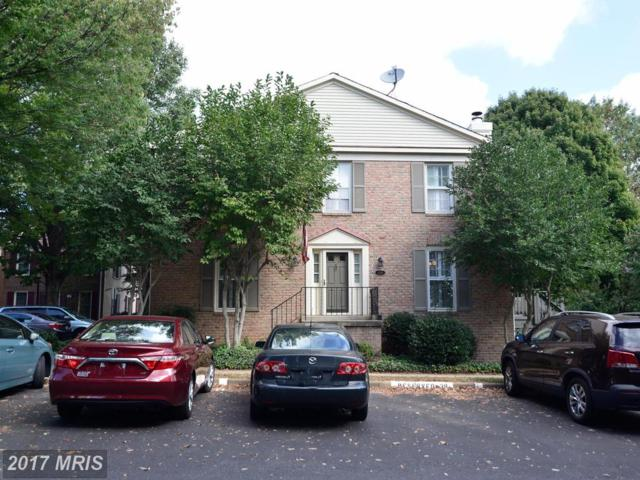 6558 Bermuda Green Court, Alexandria, VA 22312 (#FX10068191) :: Pearson Smith Realty
