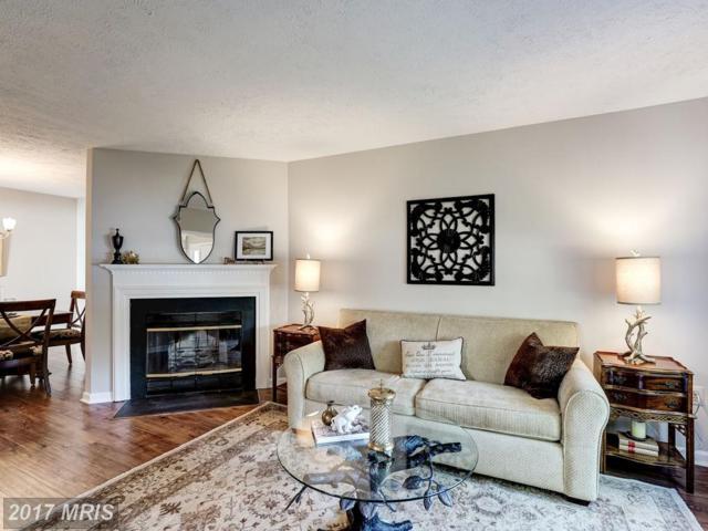 14005-B Franklin Fox Drive, Centreville, VA 20121 (#FX10069042) :: LoCoMusings