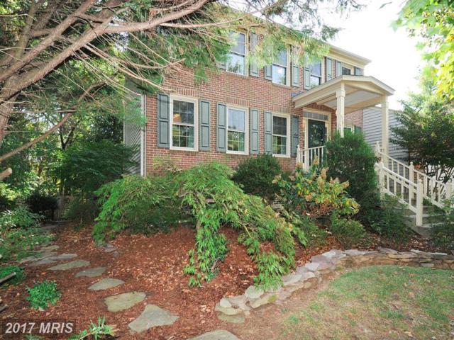15302 Jordans Journey Drive, Centreville, VA 20120 (#FX10071358) :: Jacobs & Co. Real Estate