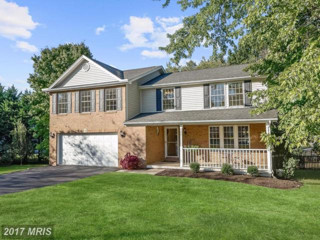 12504 Forty Oaks Court, Herndon, VA 20170 (#FX10073592) :: LoCoMusings