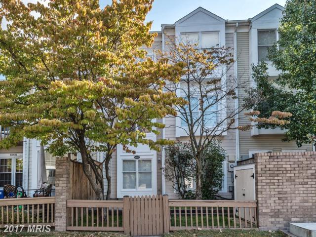 6055 Deer Hill Court, Centreville, VA 20121 (#FX10074249) :: LoCoMusings