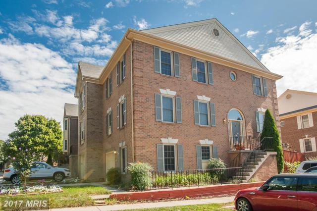5925 Norham Drive, Alexandria, VA 22315 (#FX10075929) :: Browning Homes Group
