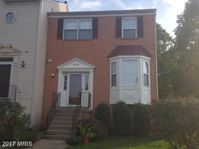 6710 Scott Terrace, Centreville, VA 20121 (#FX10076143) :: Pearson Smith Realty