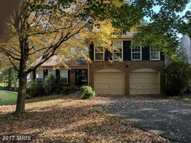 10901 Fox Sparrow Court, Fairfax, VA 22032 (#FX10076244) :: Pearson Smith Realty