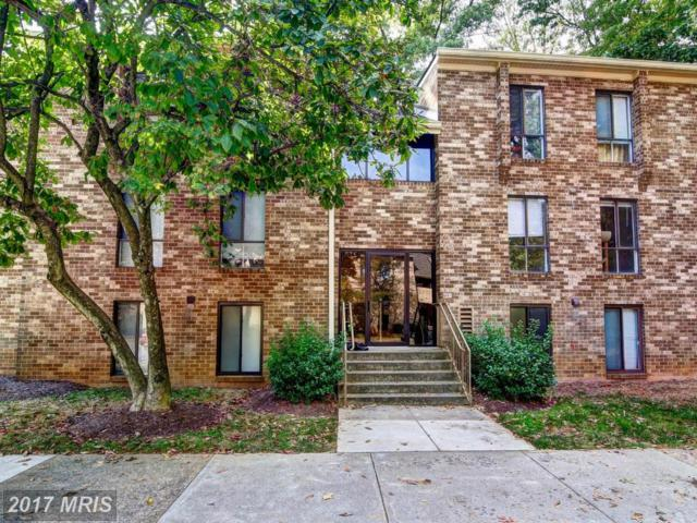 2330 Freetown Court 4/1B, Reston, VA 20191 (#FX10077121) :: The Belt Team