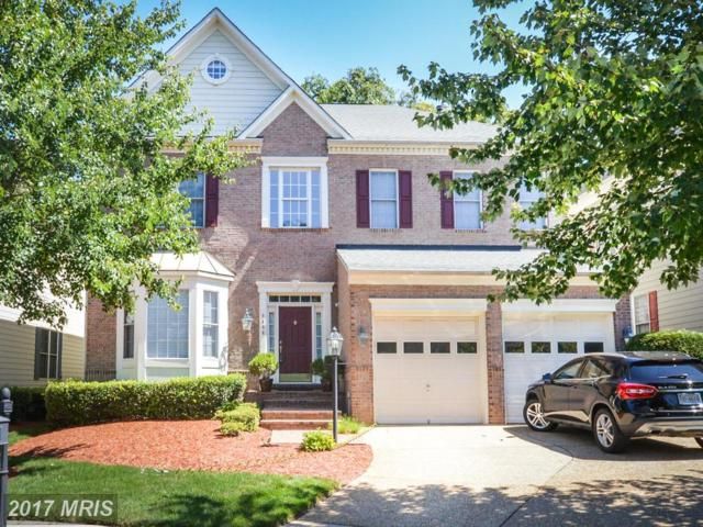 8404 Tysons Trace Court, Vienna, VA 22182 (#FX10079568) :: The Belt Team