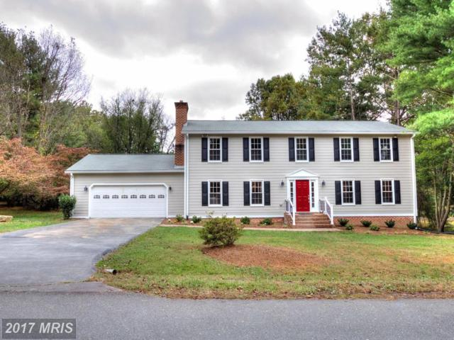 10202 Forest Lake Drive, Great Falls, VA 22066 (#FX10080405) :: The Belt Team