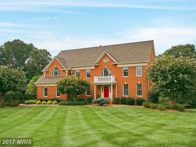 10300 Mystic Meadow Way, Oakton, VA 22124 (#FX10081391) :: The Belt Team