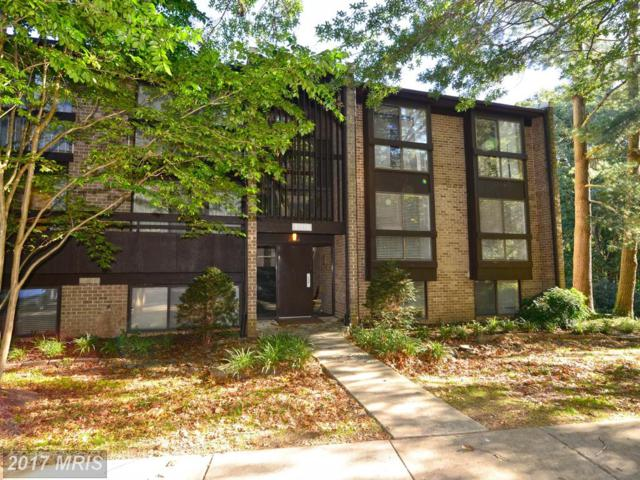 11560 Rolling Green Court #201, Reston, VA 20191 (#FX10082351) :: Colgan Real Estate