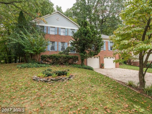 7411 Brian Run Court, Springfield, VA 22153 (#FX10082474) :: RE/MAX Executives