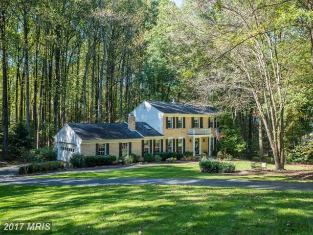 2812 Bree Hill Road, Oakton, VA 22124 (#FX10083140) :: Dart Homes